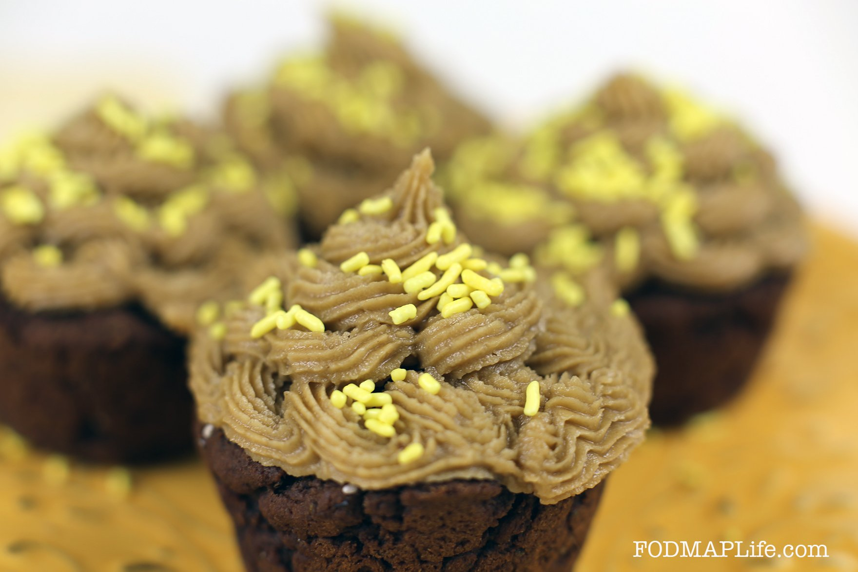FODMAP Life Recipe Challenge: Chocolate Teff Chia Cupcakes